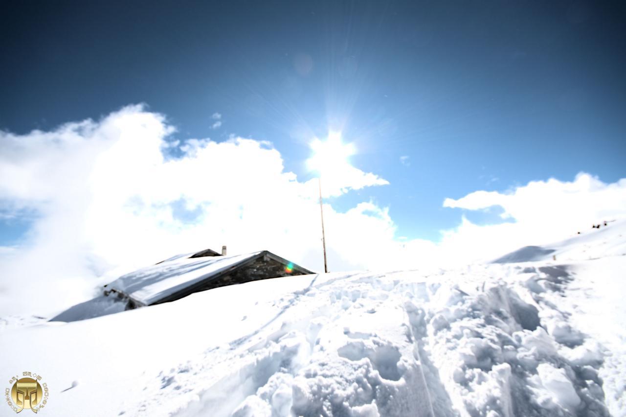 Bain de soleil sur l'alpe