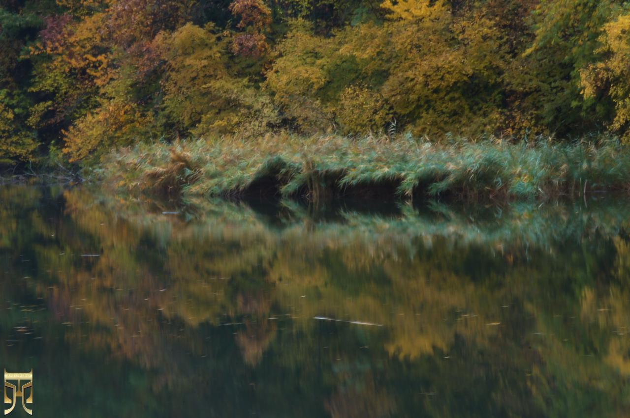Magie de l'automne
