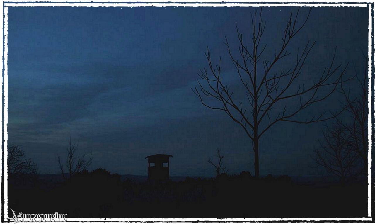 Crépuscule alsacien