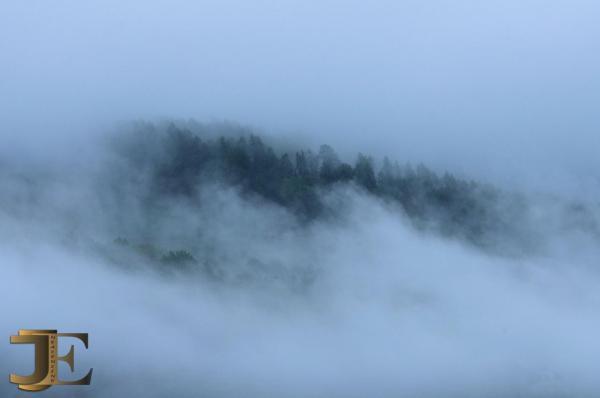 Manteau de brume