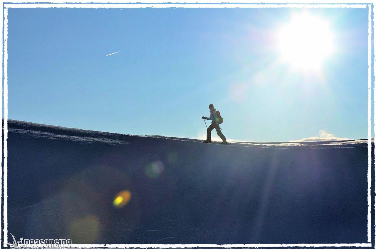 La raquetteuse des neiges
