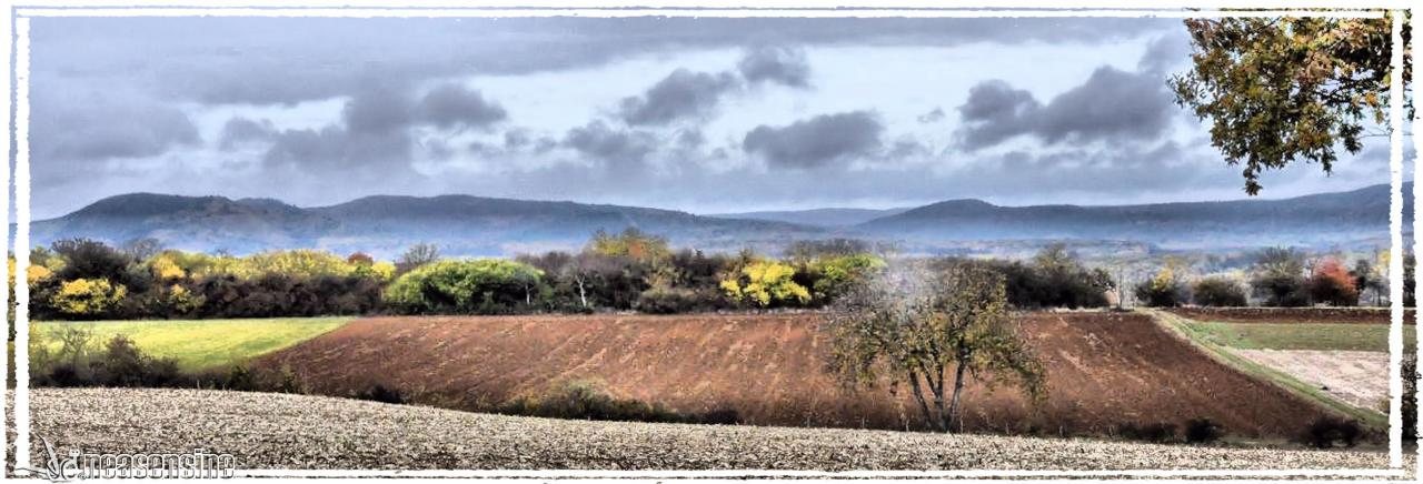 Terre d'Alsace