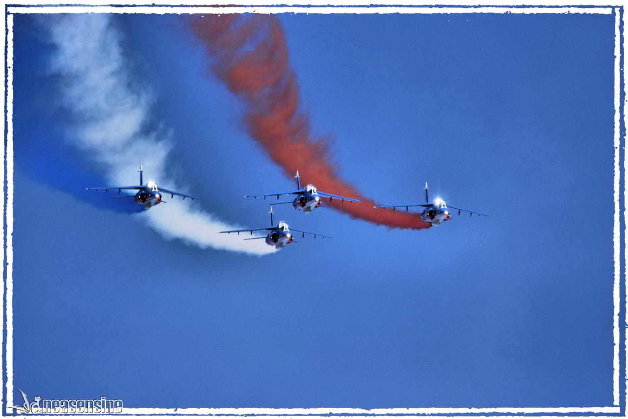 La Patrouille de France (Sion Air Show 2011)