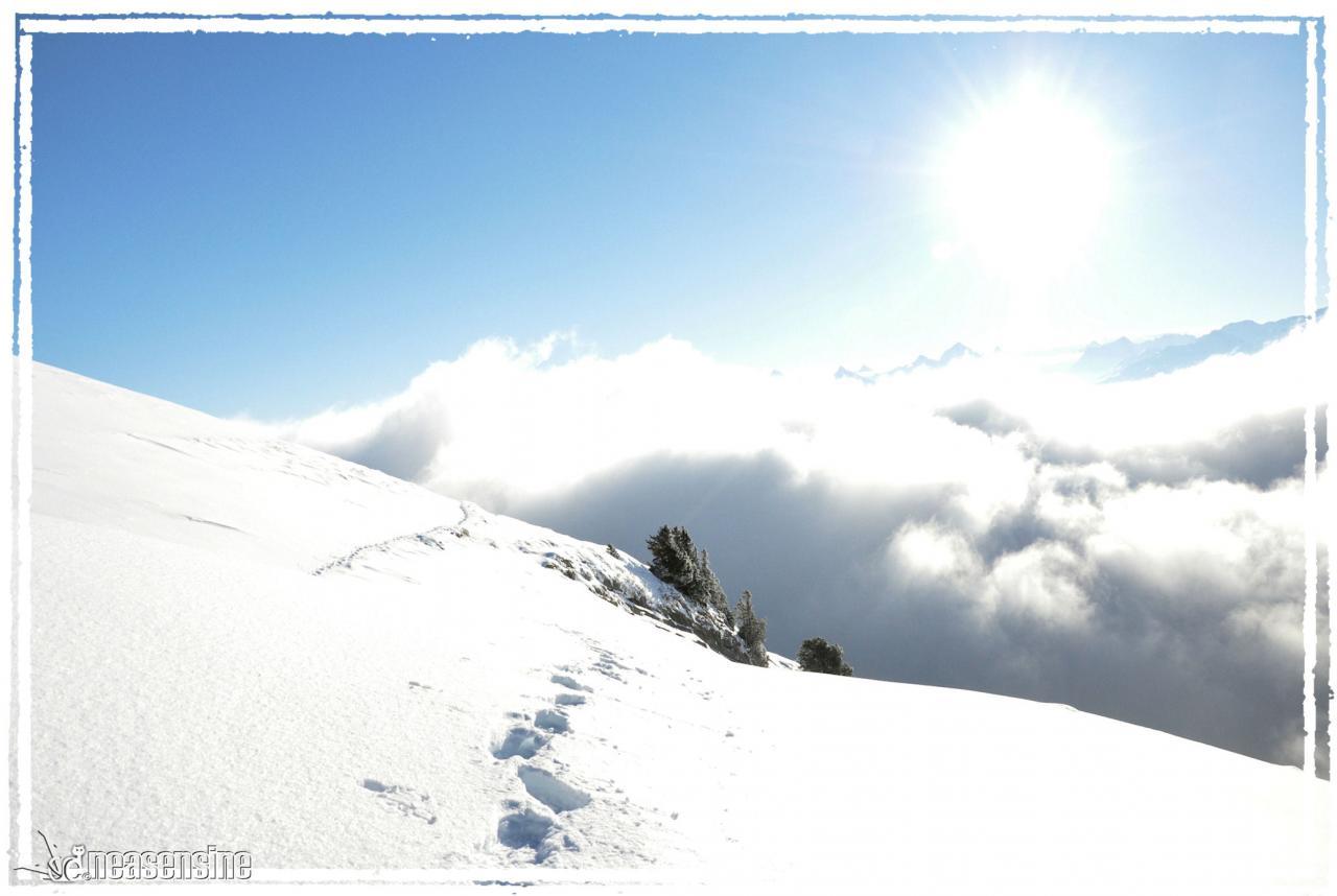 Bord de ... mer de nuage