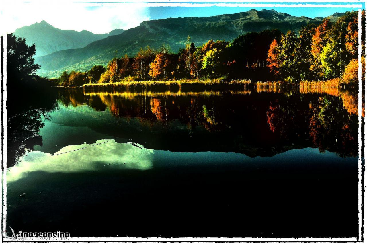 L'automne à Montorge