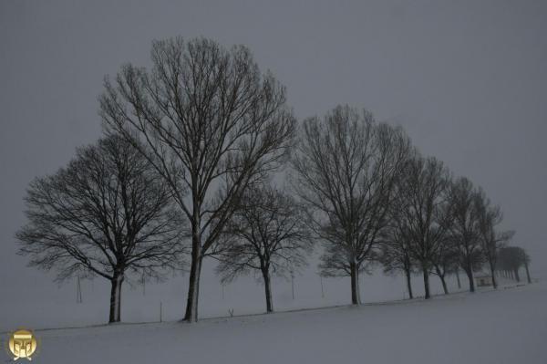 L'hiver a belle allure