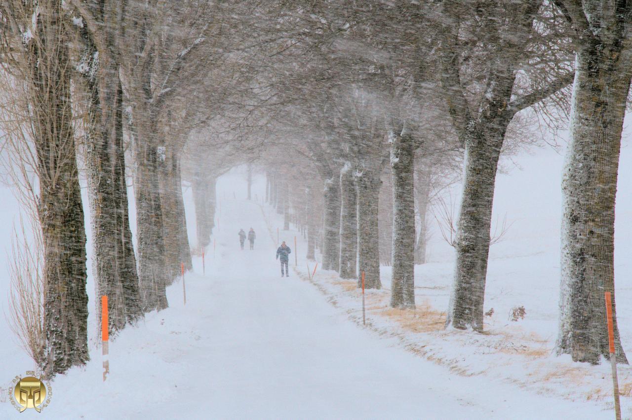 Le vent et la neige se sont unis...