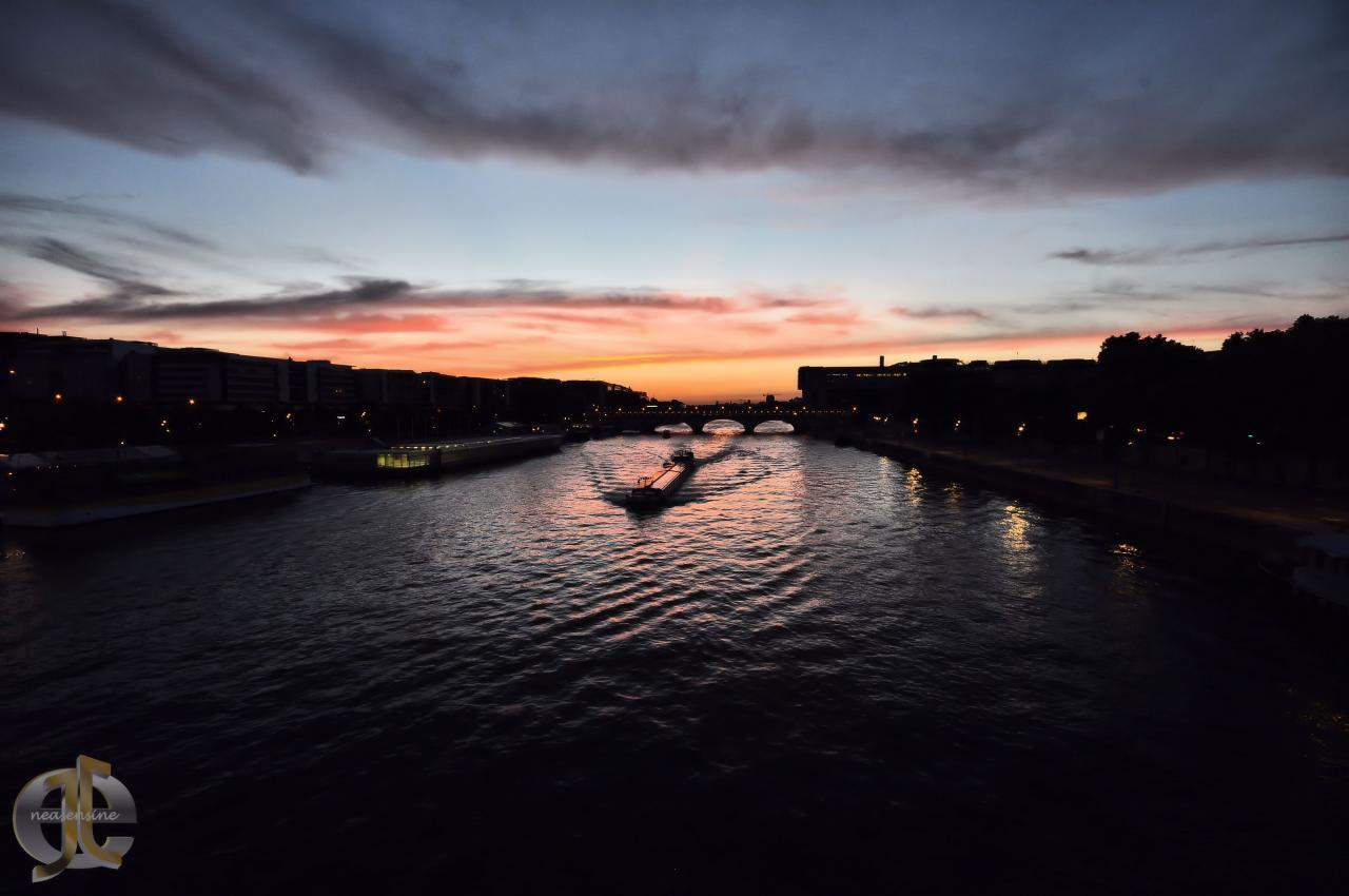 Seine en vie à Paris