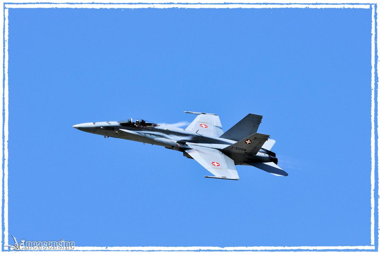 FA-18 Hornet (Sion Air Show 2011)