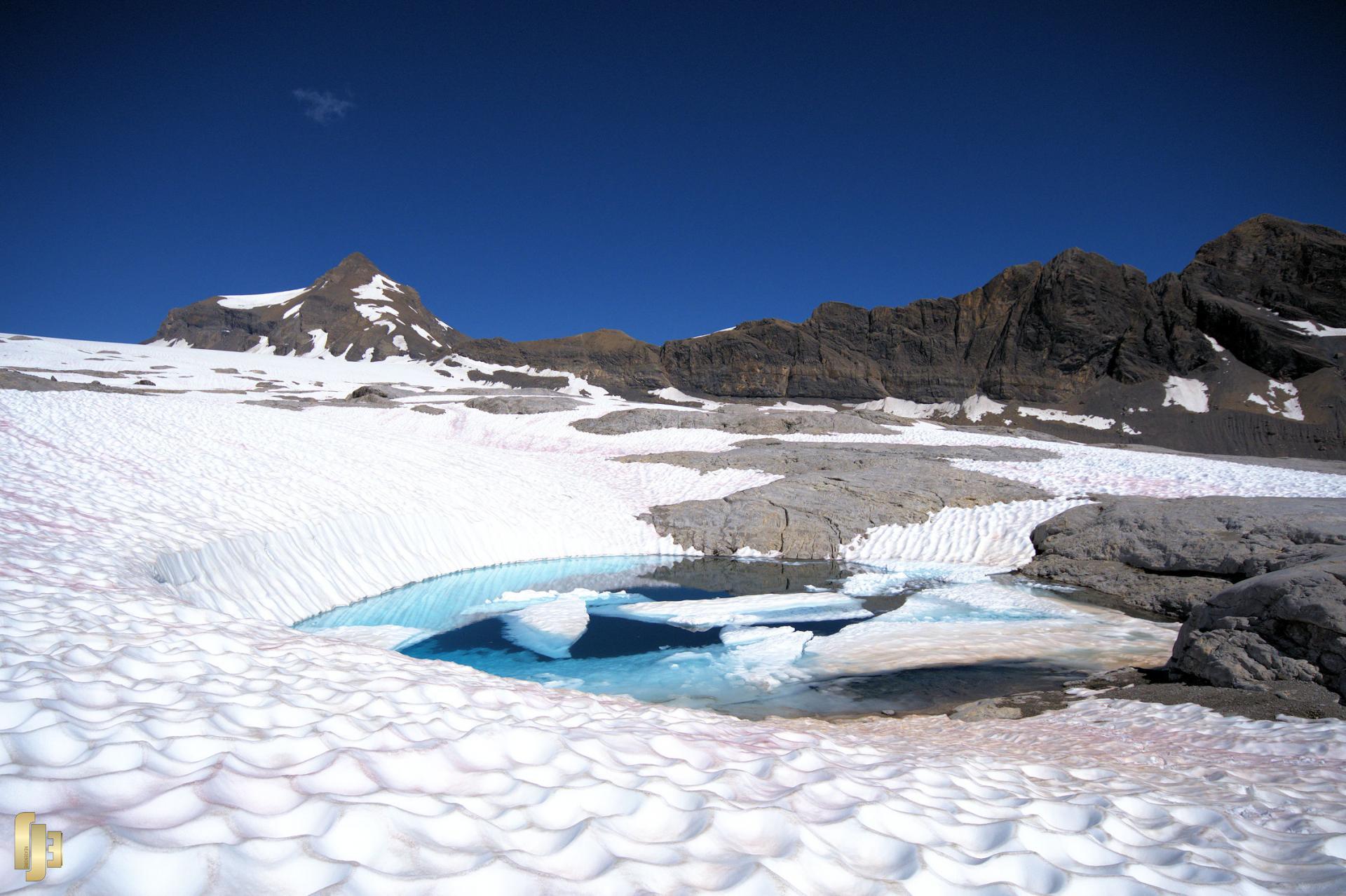 Trésor alpin